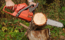 Red chainsaw Stock Photography