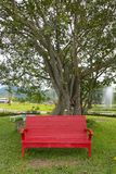Red chair on the green grass with tree Stock Image