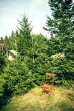 Red chair in nature Royalty Free Stock Photos
