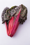 Red chard Stock Photography