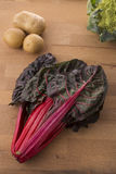 Red chard Royalty Free Stock Photography
