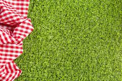 Red checkered napkin on the green grass. stock images