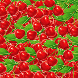 Red cherries. Beautiful background of red cherries, illustration Royalty Free Stock Photos