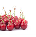 Red cherries Royalty Free Stock Image