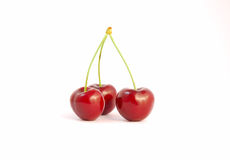 Red cherries. Three red cherries on white background Stock Photos