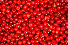 Red Cherries. Background. Royalty Free Stock Images