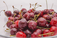 Red cherries in close up Stock Photos