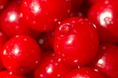 Red Cherries Close Up In Fruit Market Royalty Free Stock Photos