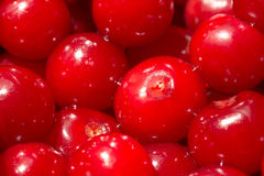 Red Cherries Close Up In Fruit Market Stock Photography