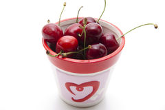 Red cherries in the cup Royalty Free Stock Images