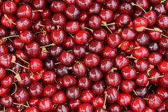 Red cherries fruit Royalty Free Stock Image
