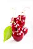 Red cherries with green leaf. Some red cherries with green leaf  on white Royalty Free Stock Photography