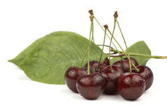 Red cherries and green leaves Stock Photos