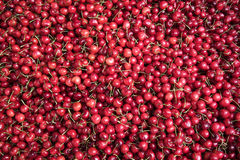 Red cherries. Royalty Free Stock Images