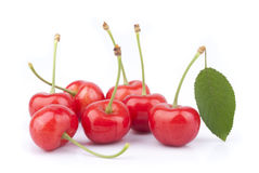 Red cherries. Isolated on white background Stock Photography