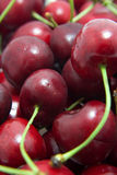 Red cherries macro Stock Images