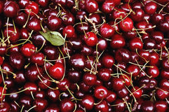 Red cherries. Many red cherries spread out on the counter Royalty Free Stock Photo