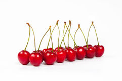 The red cherries. Are organized in row Royalty Free Stock Images