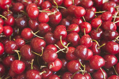 Red cherries. Pile of red cherries with green leaves royalty free stock photos