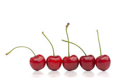 Red Cherries in a Row Royalty Free Stock Photos