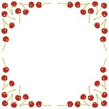 Red cherries square frame. Natural frame of red cherries sweet spring summer fruit card background with white round blank place for your text Stock Photo