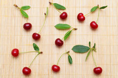 Red cherries and stalks Stock Photography