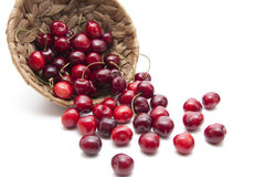 Red cherries with stem Royalty Free Stock Images
