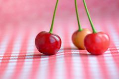 Red cherries still life. Three red cherries on a table still life stock photos