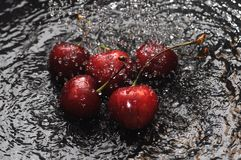 Red cherries in water Stock Photos