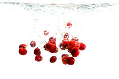 Red Cherries in water. Cherries falling into Water with lots of splashes and bubbles Stock Photography