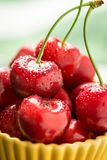 Red Cherries with Water Drops Stock Photos