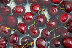 Red Cherries with Water Stock Images