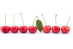 Red cherries. On a white background Stock Photo