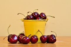 Red Cherries in a yellow bucket. Gorguous red cherries in a little yellow bucket Royalty Free Stock Photo