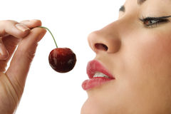 The red cherry Stock Photography