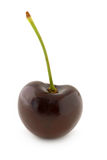 Red cherry. Dark red cherry, with stalk. Isolated on white background, with shadow Royalty Free Stock Photography