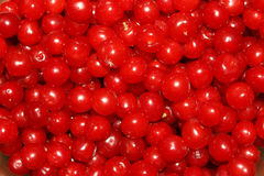 Red cherry. Red ripe cherry as a background Royalty Free Stock Photography