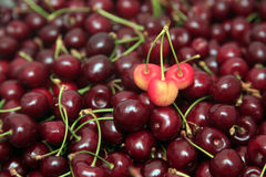Red cherry. Red fresh cherry background,focus on the cherry on top Stock Images