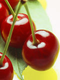 Red cherry Royalty Free Stock Images