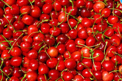 Red cherry background Royalty Free Stock Photography