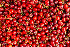 Red cherry background royalty free stock photo