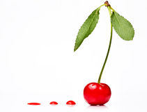 Red cherry with drops of blood Royalty Free Stock Images