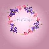 Red cherry flower Stock Image