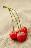 Red cherry on hessian background Stock Photography