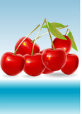 Red cherry illustration. Red cherry isolated on on white background. Photo-realistic illustration stock illustration