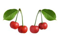 Red cherry with leaves Stock Image