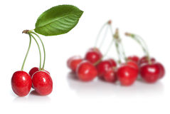 Red cherry with leaves isolated Stock Image