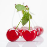 Red cherry with leaves isolated Stock Photos