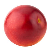 Red cherry plum isolated on the white background Stock Photography