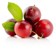 Red cherry plums isolated on the white background Royalty Free Stock Photo